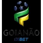 Brazilian Goiás State Championship