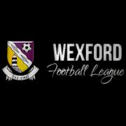 Irish Wexford Football League Premier Division