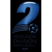 Uruguayan Second Professional Division