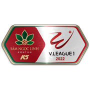 Vietnamese V-League Division One