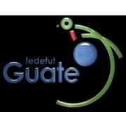 Guatemala FA Logo