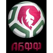 Belarus FA Logo