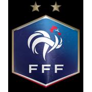 France FA Logo