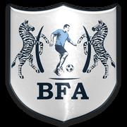 Botswana FA Logo