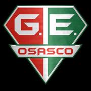 Grêmio Esportivo Osasco