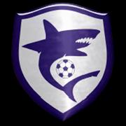 Leme FC Zona Sul