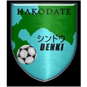 Shindo Denki FC
