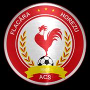 ACS Flacăra Horezu