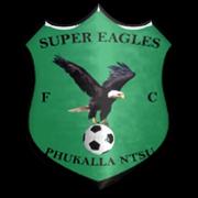 Super Eagles Football Club