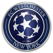 Everton Fc Westchester In Football Manager 2015