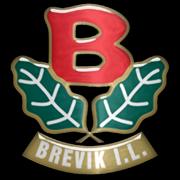 Brevik IL
