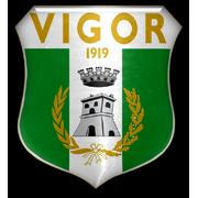 Vigor Lamezia