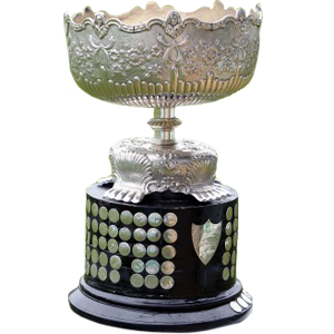 Irish Leinster Senior League Premier Division Trophy