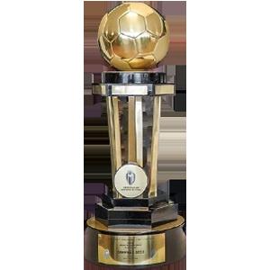 Campeonato Paranaense Trophy