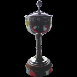 English Northern Premier League Premier Division Trophy